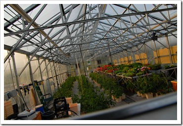 pikes greenhouse inside